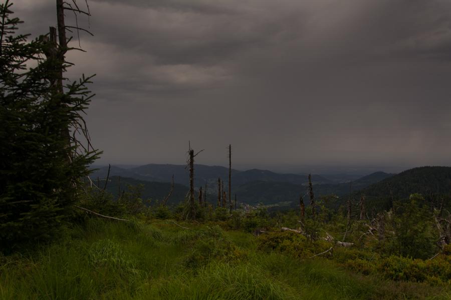 Regenfront Hornisgrinde