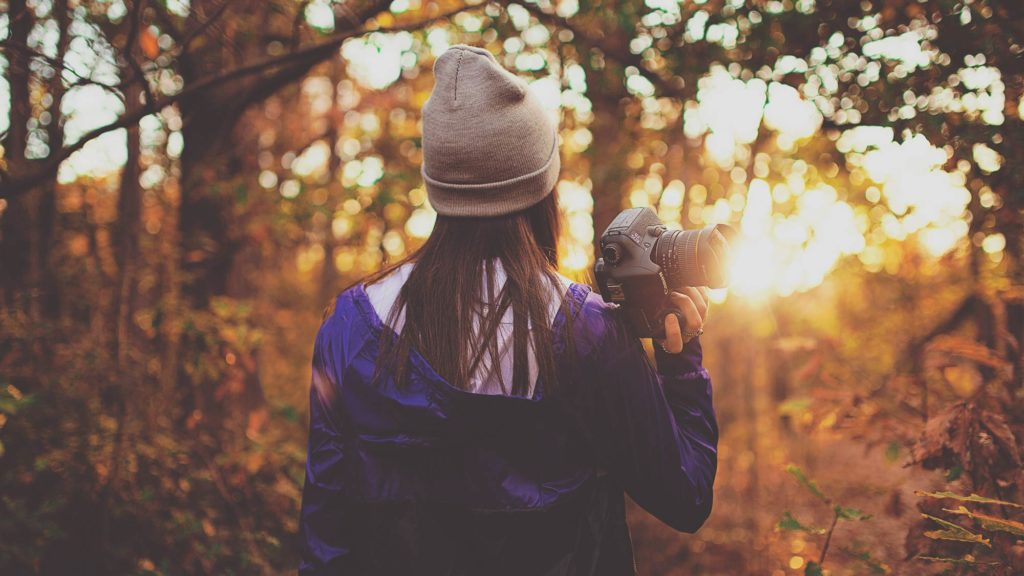 Naturfotografie Canon vs Nikon
