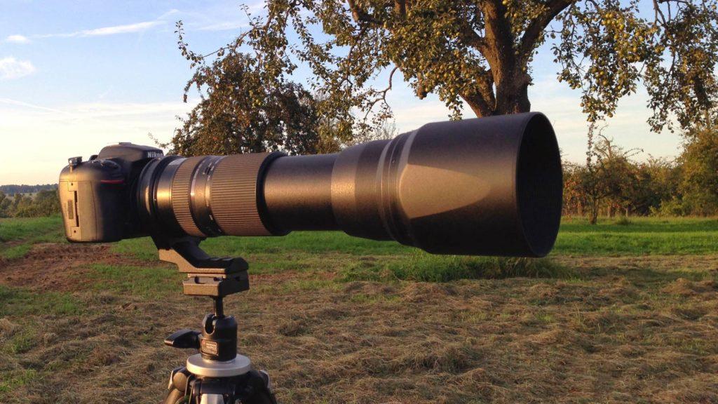 Tamron 150-600 Naturfotografie