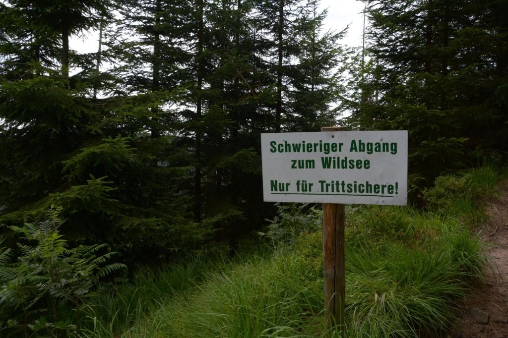 Abstieg zum Mummelsee