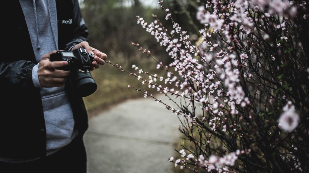 Naturfotografie Gebrauchtkauf